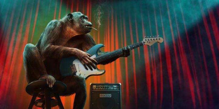 ギターを弾く猿