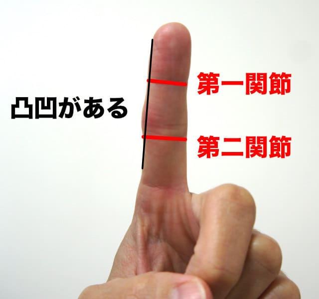 指には凸凹がある