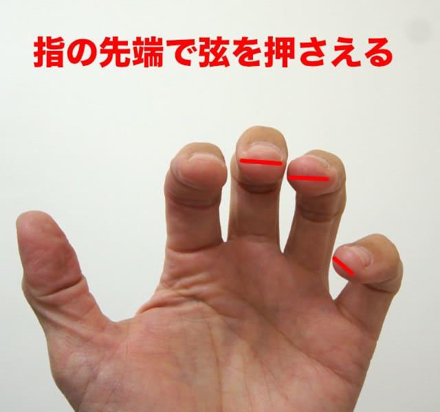 指の先端で弦を押さえる
